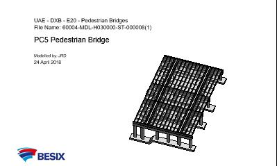 Pedestrian Crossing Bridge 5